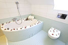 Luxury apartment Olivova Prague Bathroom 1