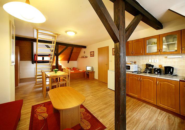 Apartments In Cesky Krumlov For Rent Cesky Krumlov Apartments For Rent